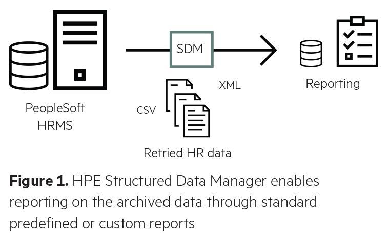 Structured Data Manager | WyldLynx